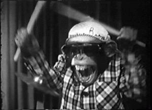 Monkey Drummer Facilitator